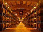 Castello Banfi Winery.
