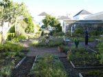 Eureka garden.